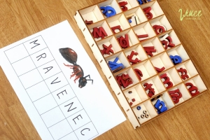 tema-mravenci-predskolaci_05