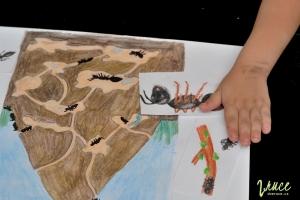 tema-mravenci-predskolaci_07