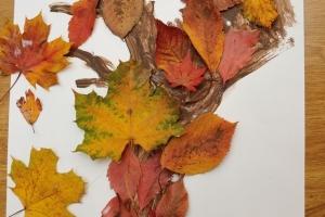 Podzimní strom z listí