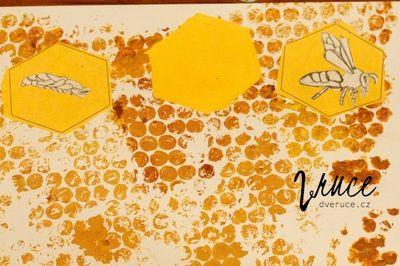 Vývoj včely na nástěnku